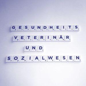 Qualitätsmanagement im Gesundheitswesen, Veterinärwesen und Sozialwesen - QM-Beratung Rhein S.Q.M. GmbH
